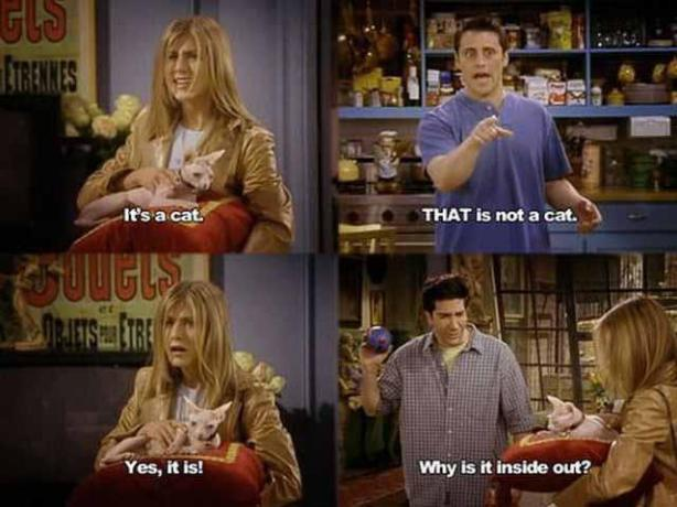 In 1998 Rachel was living my dream life. Actually, in 2013 I still fantasize about living Rachel's life. Single gal, inside out cat, nice apartment. BAM!